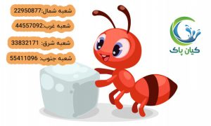 kvgjnou5e09ovuh53oth53iyhe5ovtih5vtih54tvivh5ti 300x180 موریانه و مورچه ها ریزترین آفت خانه شما